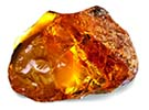 Amber Image