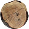 Arabian Sandalwood Image