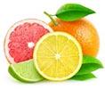 Citruses Image