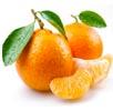 Mandarin Orange Image