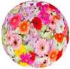 Mixed Flora Image