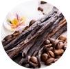 Vanilla Bean Image